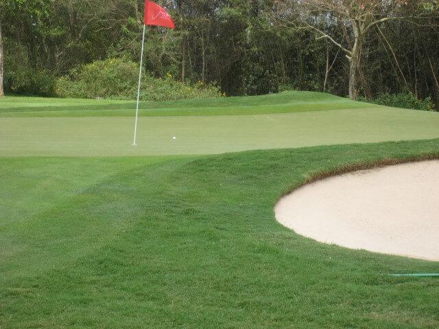 海外ゴルフ